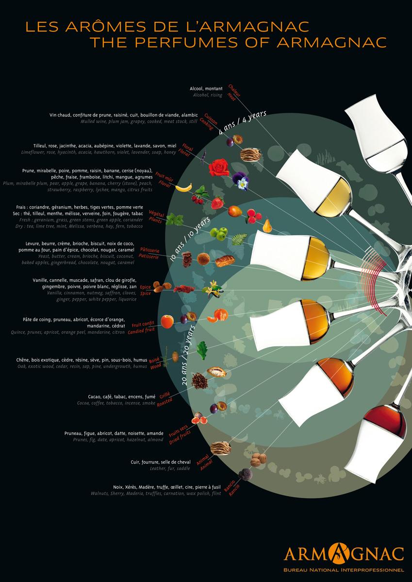 Wheel of aromas in Armagnac